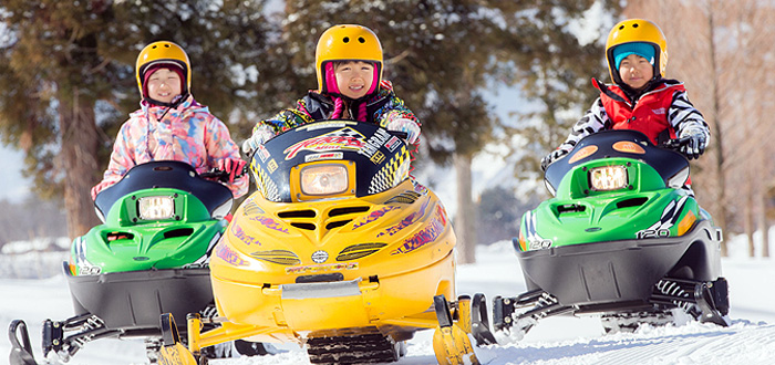 tangram_snowmobil.jpg